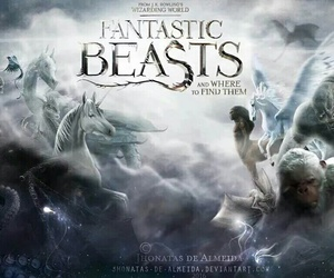 fanart, harry potter, and fantastic beasts image