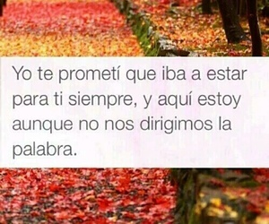 frases, love, and palabras image