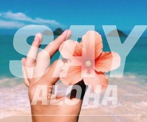 Aloha, arena, and azul image
