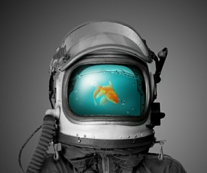 fish, astronaut, and water image