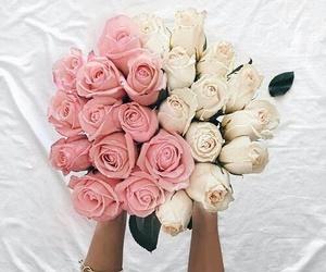amazing, botanical, and flower image