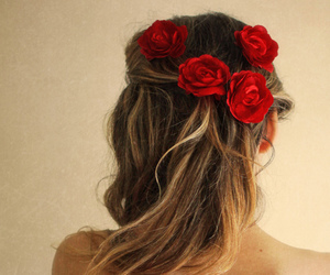 red and roses image
