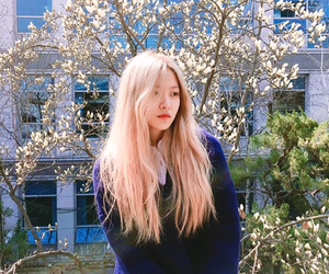 yeri, red velvet, and kpop image