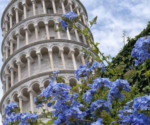 italy, travel, and Pisa image
