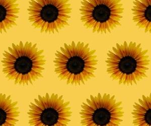 wallpaper, pattern, and patternator image