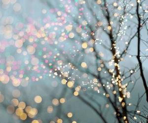 light, tree, and winter image