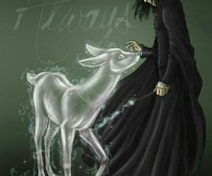 always, harry potter, and severus snape image