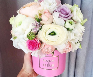 beautiful, instagram, and flowers image