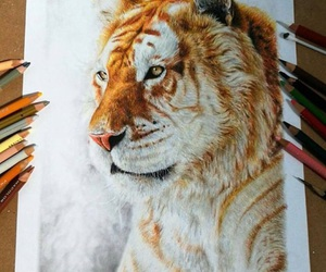 tiger and drawing image