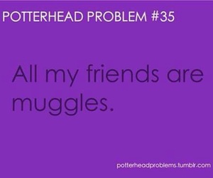 harry potter, problem, and potterhead image