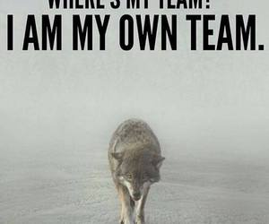 alone, team, and wolf image