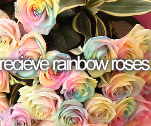rose, rainbow, and before i die image