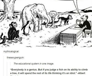 animal, education, and quote image