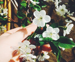 spring, weheartit, and azerbaijan image