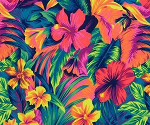 flowers, background, and colorful image