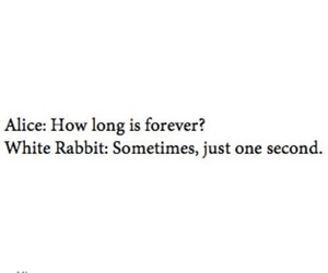forever, second, and white rabbit image