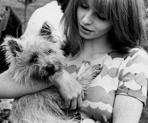 60s, beauty, and dog image