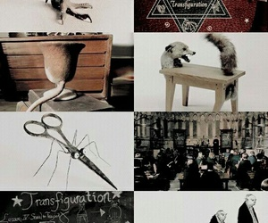 fantasy, harrypotter, and hogwarts image
