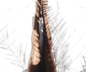 legs, palm, and shadow image