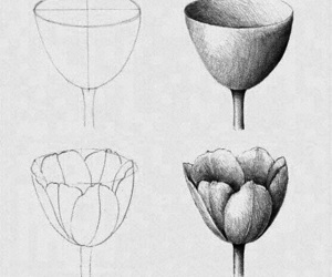 diy, draw, and flowers image
