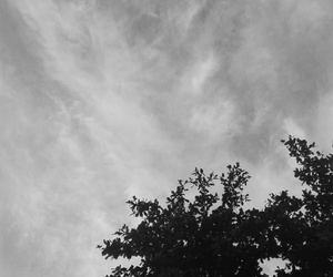 blackandwhite, breeze, and clouds image