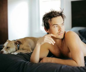caleb, dog, and Hot image