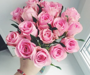 flowers, pink, and pink roses image