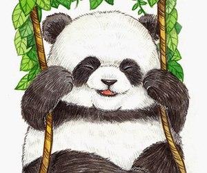 background, beautiful, and panda image