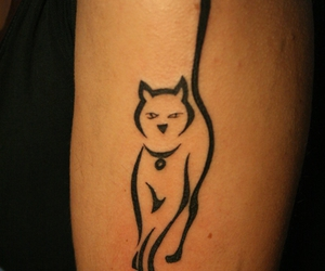 cat, tattoos ideas, and girl image
