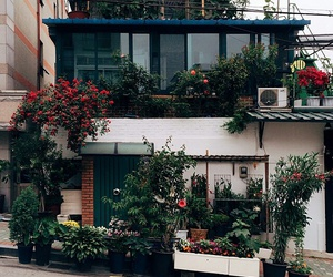 house, flowers, and plants image