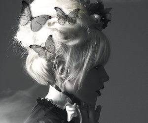 butterfly, kerli, and black and white image