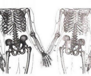 love, skeleton, and forever image