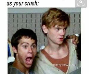 funny, the maze runner, and thomas brodie sangster image