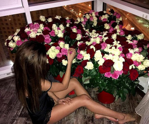 girl, roses, and luxury image