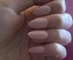 almond, manicure, and nails image
