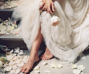 rose, flowers, and dress image