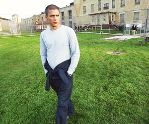 prison break, michael scofield, and series image