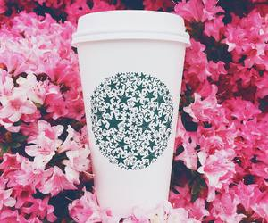 flowers, starbucks, and coffee image
