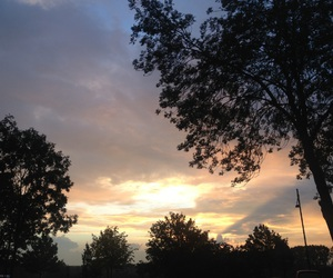sky, trees, and sunset image