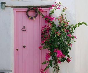 pink, flowers, and door image