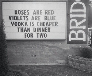 vodka, rose, and quotes image