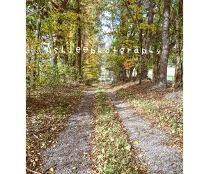 country, fall, and back roads image