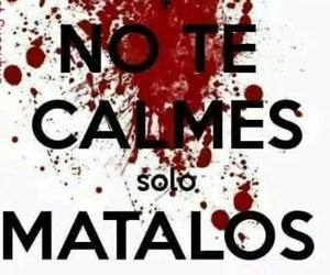 kill, blood, and frase image