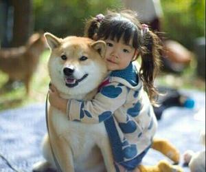 amigo, perro, and niño image