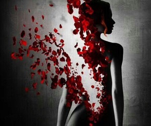 rose, woman, and red image