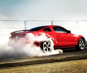 cars and mustang image
