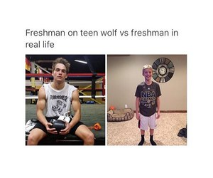 teen wolf, funny, and freshman image