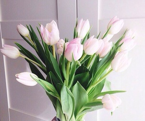 flowers, tulips, and style image