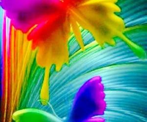 like a rainbow image