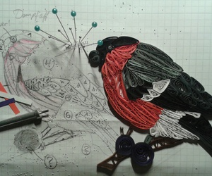bird, quilling, and bullfinch image
